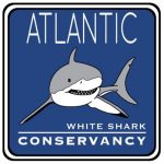 Atlantic_White_Shark_Conservancy_logo