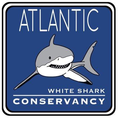 Track Sharks • Tracking Sharks