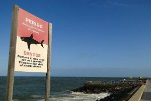 Shark_sign