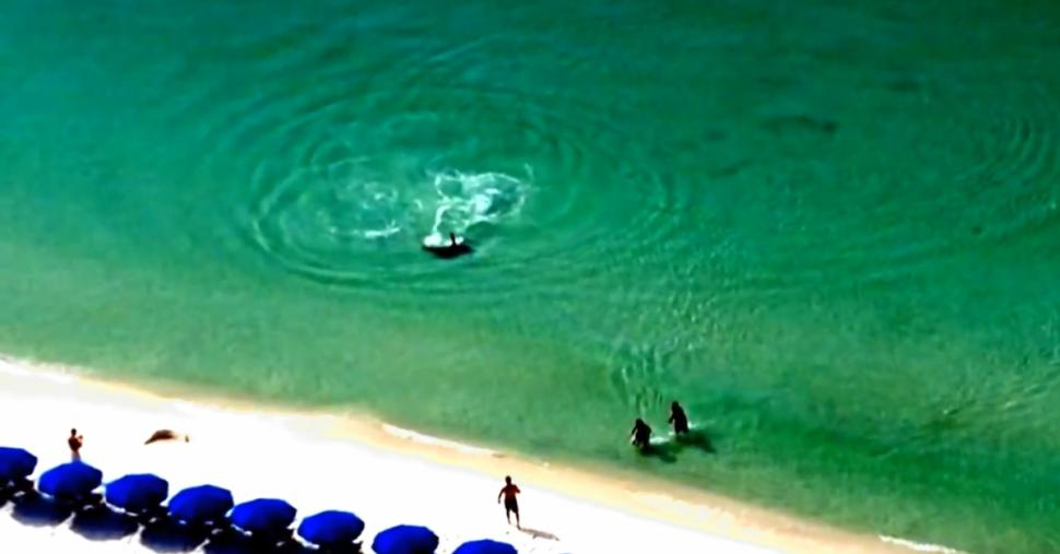 Destin Florida Shark Attack