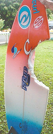 Bethany Hamilton's surf board. Credit Jan Tenbruggencate