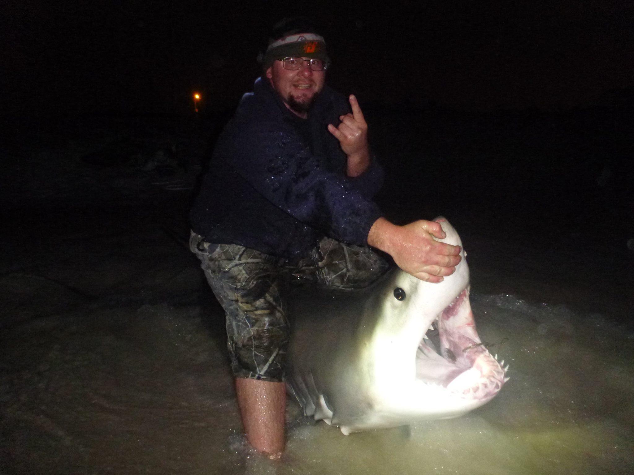 Great white caught near panama city florida tracking sharks for Key city fish