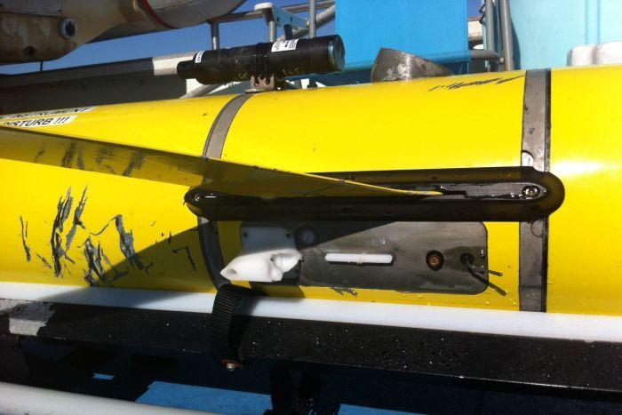 University of western australia shark bite glider