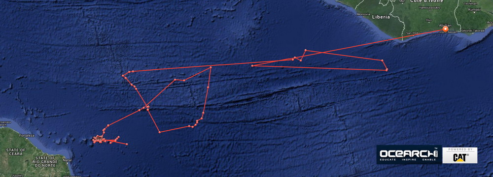 Last_stop_for_tiger_shark_lampiao