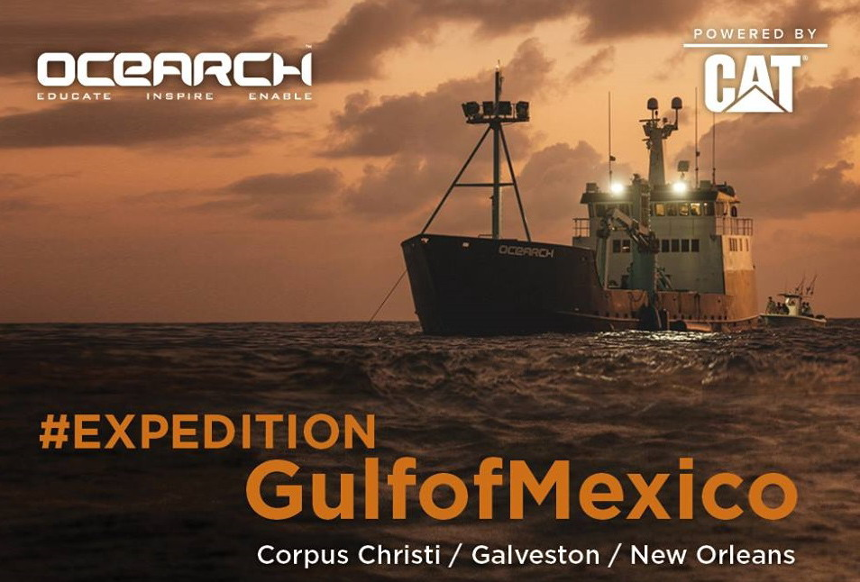 exp-gulf-of-mexico-OCEARCH1