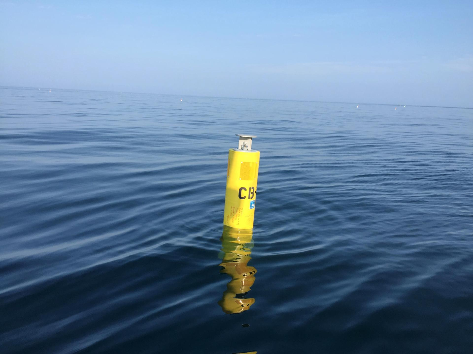 A US shark tracking buoy Photo: Kristin Orr