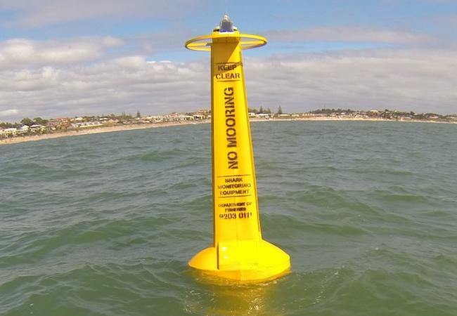 shark_buoy