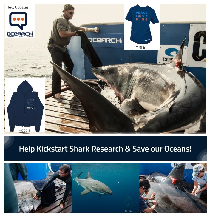 OCEARCH_kickstarter_great_white_research