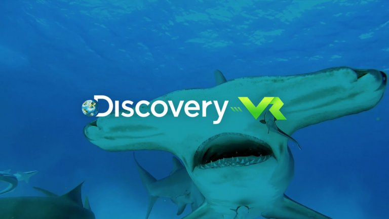 Photo: Discovery