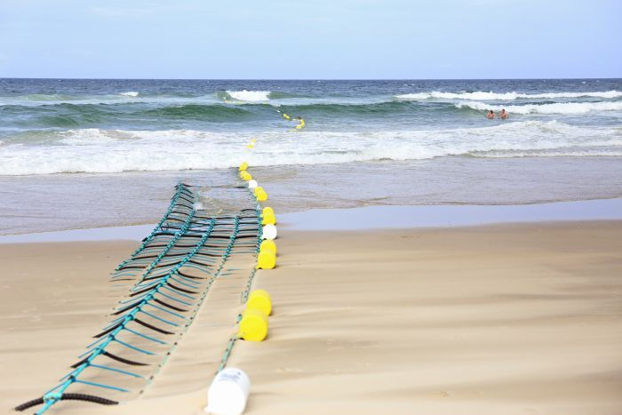 Barrier construction at Lennox Head Photo ABC North Coast: Samantha Turnbull