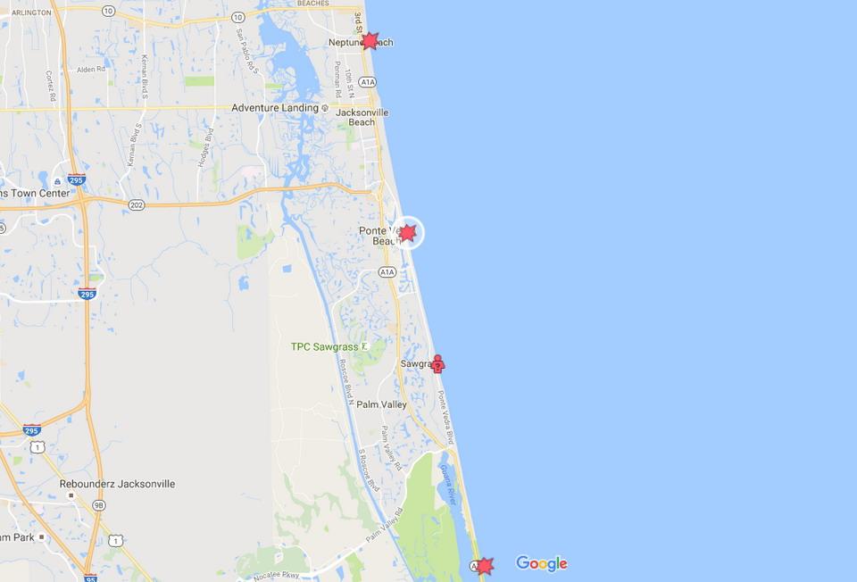 shark_attack_bite_ ponte vedra beach_florida a shark