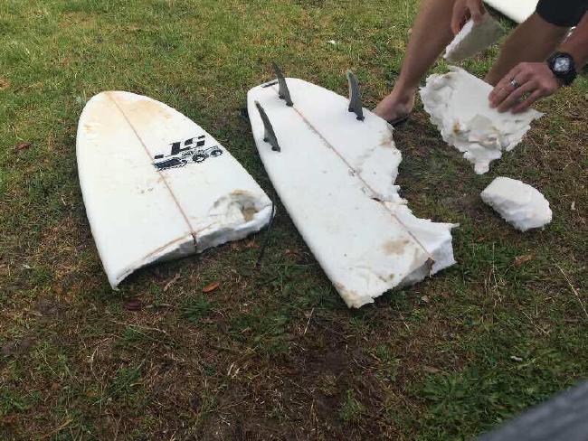 surf board bitten by great white shark