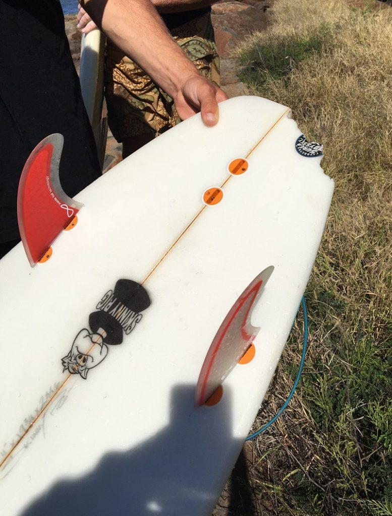 tiger shark bites surboard
