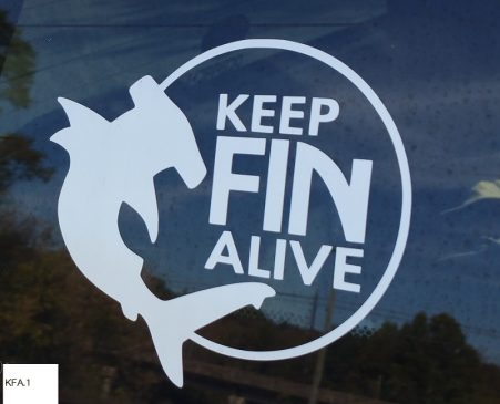 Keep Fin Alive window decal