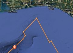 Great white shark tracked in the Panhandle, and it's not the first