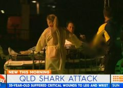 Fatal shark attack in Queensland