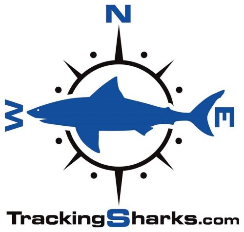 Tracking Sharks Logo